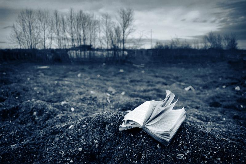 a_story_untold_by_tfavretto-d10ho56